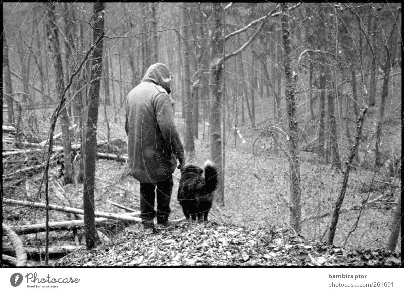 Human being Man Nature Dog Tree Plant Animal Adults Forest Environment Landscape Snow Snowfall Moody Weather Hiking