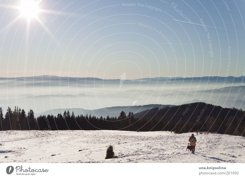 (sch)nee Vacation & Travel Trip Far-off places Freedom Winter Winter vacation Mountain Hiking Nature Landscape Sunlight Beautiful weather Fog Snow Alps Schöckl
