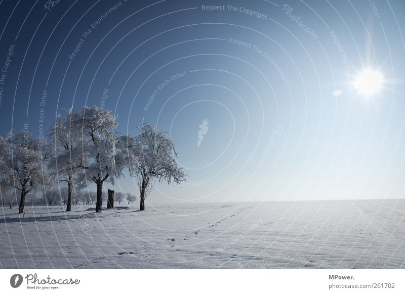 irendwo in thuringia Nature Landscape Horizon Winter Beautiful weather Ice Frost Snow Illuminate Cold Environment Far-off places Frozen Blue sky Snowscape White