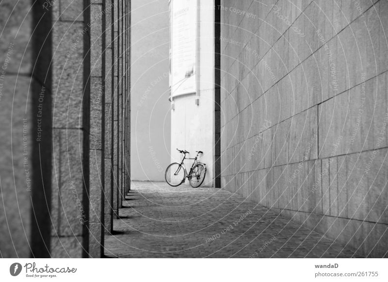 White City Beautiful Joy Black Relaxation Life Wall (building) Architecture Gray Movement Stone Wall (barrier) Contentment Leisure and hobbies Elegant