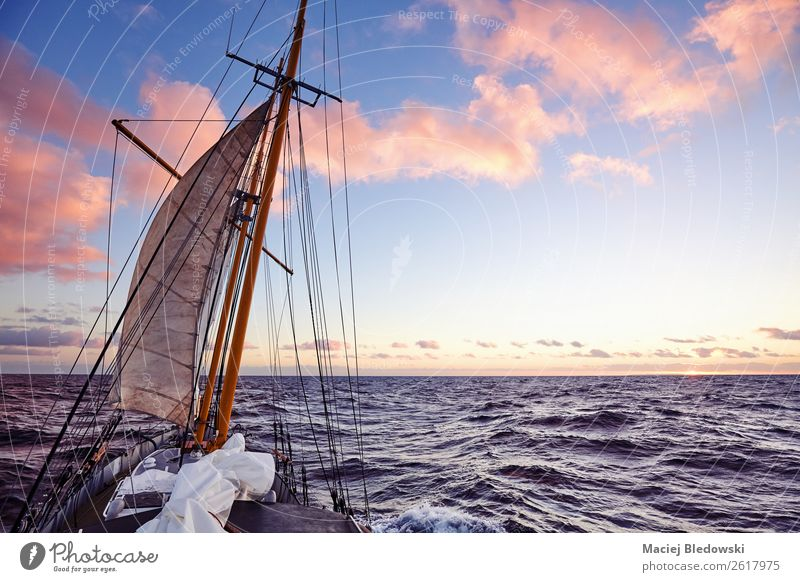 Old sailing ship mast at sunset. Lifestyle Vacation & Travel Trip Adventure Far-off places Freedom Cruise Expedition Summer Ocean Sky Horizon Beautiful weather