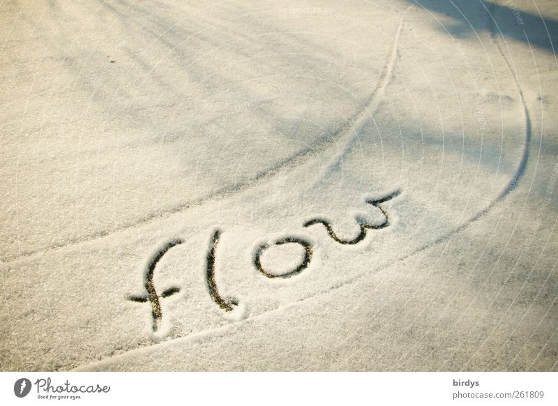 Let it flow Winter Snow Characters Movement Friendliness Positive Gray White Trust Flexible Esthetic Energy Inspiration Life Ease Optimism Swing Line Word 1