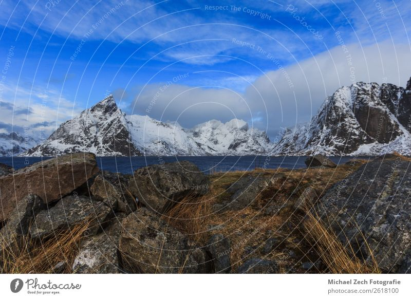 View to beautiful fjord on lofoten islands Sky Vacation & Travel Nature Landscape Ocean Winter Mountain Environment Snow Coast Trip Weather Vantage point Island
