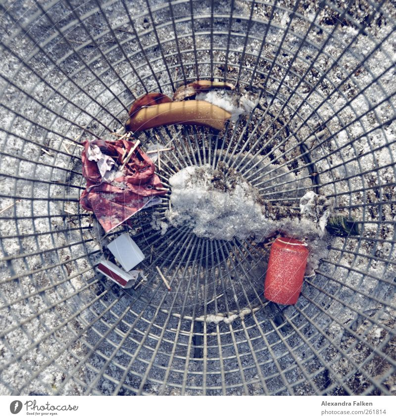 From above. Trash container Disciplined Purity grave candle Candle Match Grating Round Environmental pollution Cemetery Colour photo Deserted Day