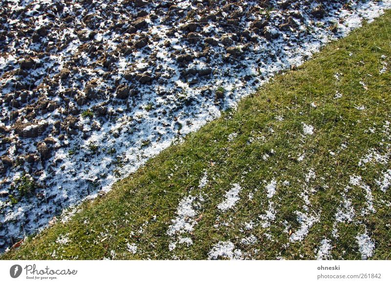 Winter Meadow Life Cold Snow Grass Line Earth Ice Field Frost