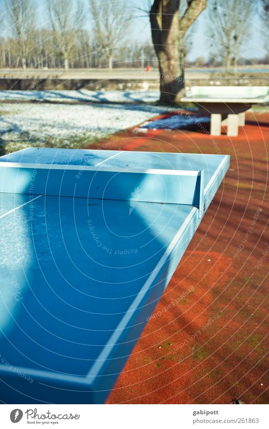 Blue Red Winter Cold Sports Movement Line Brown Gloomy Break Anticipation Performance Table tennis Sporting Complex Winter break Table tennis table