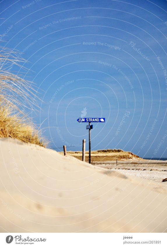 To the beach Relaxation Vacation & Travel Summer Summer vacation Beach Nature Sand Cloudless sky Coast North Sea Warmth Colour photo Exterior shot