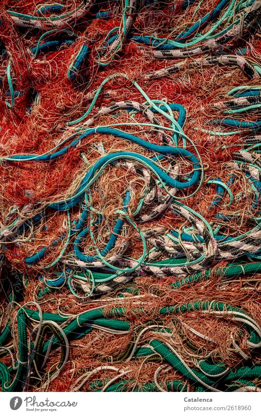 muddled Fisherman Fishery Fishing boat Ocean fishnet Rope Net Trawl netting Plastic Multicoloured Threat Survive Environment Environmental protection