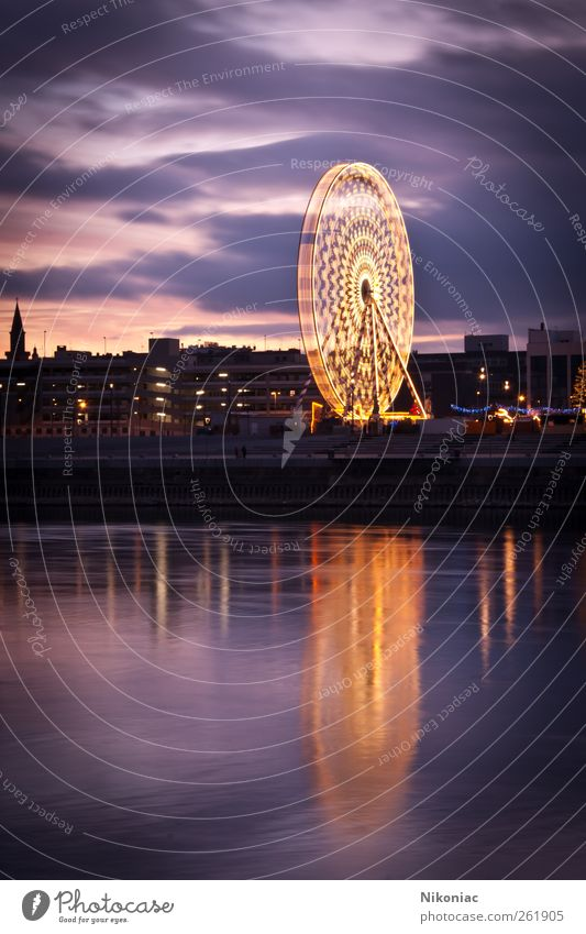 In the light of the Ferris wheel Tourism Water Town Skyline Moody Dream Colour photo Exterior shot Deserted Copy Space left Copy Space bottom Evening Twilight