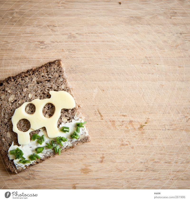 Green Nutrition Food Funny Brown Cute Healthy Eating Creativity Idea Sheep Bread Delicious Organic produce Animalistic Table Cheese