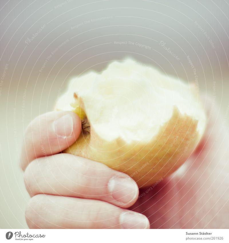 Nutrition Food Eating Fruit Fresh Apple Organic produce Diet Feeding Vegetarian diet Retentive Dental care Apple harvest Firm to the bite