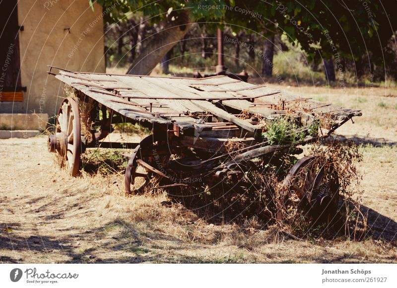 Vacation & Travel Summer Calm Far-off places Wood Brown Trip Adventure Broken Derelict Agriculture Farm Wheel France Destruction Wooden board