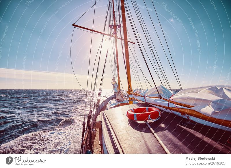 Sailing against the sun. Lifestyle Vacation & Travel Adventure Freedom Cruise Sun Ocean Sky Horizon Storm Wind Transport Sailboat Watercraft Nostalgia water