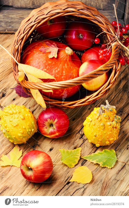 Autumn apples and pumpkins autumn fall background food organic season harvest nature yellow natural fruit orange healthy vegetable seasonal foliage fresh