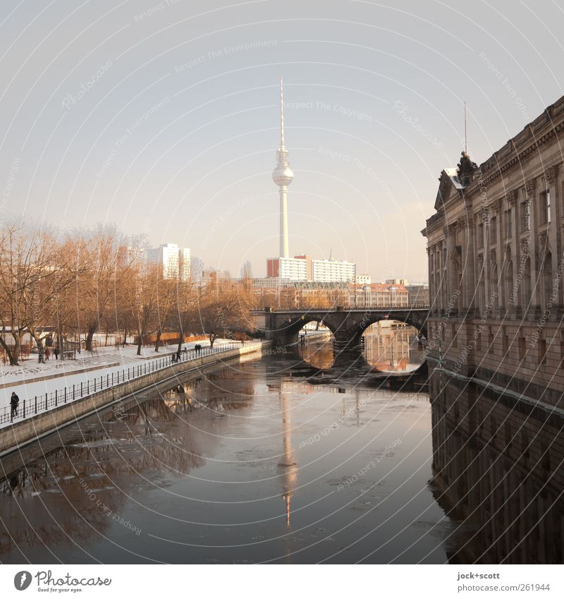 Mirror, mirror on the Spree Cloudless sky Winter Ice Frost tree River bank Downtown Berlin Capital city built Facade Tourist Attraction Landmark Museum island