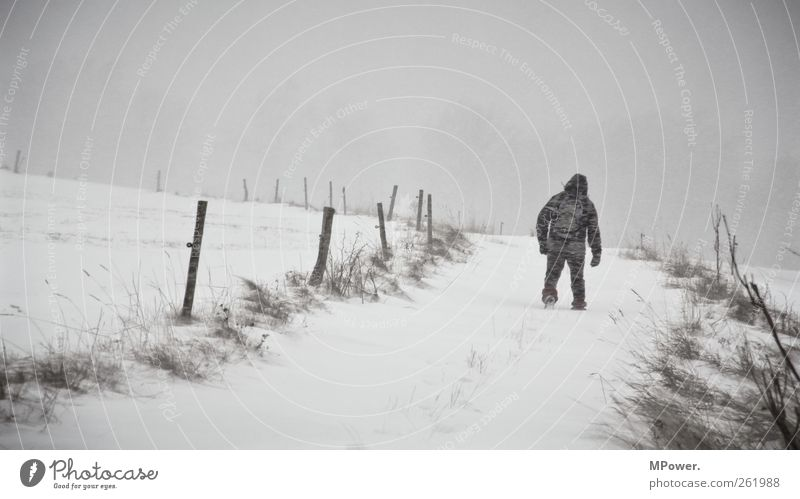 Human being Man White Loneliness Winter Adults Snow Gray Going Power Masculine Hiking Adventure Hope Infinity Footpath