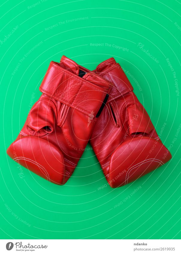 red sport leather boxing gloves Lifestyle Sports Boxing glove Leather Gloves Fitness Above Green Red Protection Colour Competition Creativity background boxer