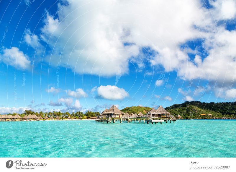 in the beach Luxury Exotic Relaxation Vacation & Travel Tourism Summer Beach Ocean Island House (Residential Structure) Nature Landscape Sand Sky Tree
