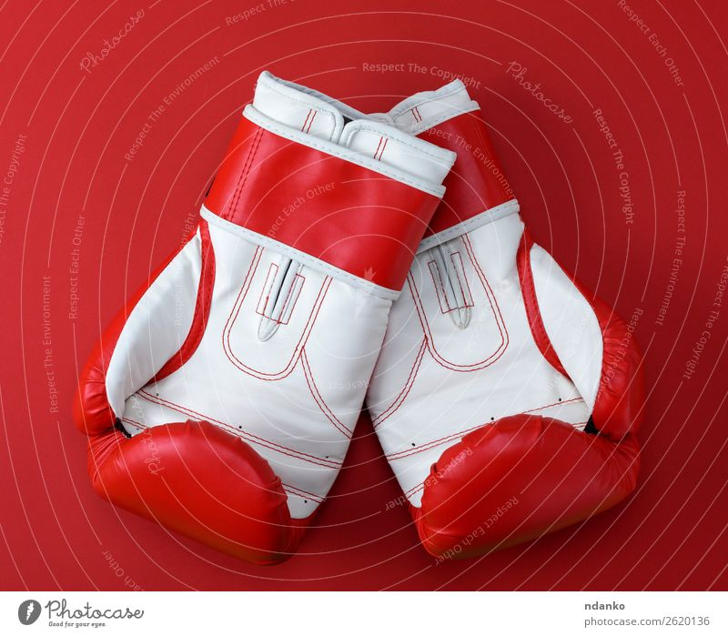 leather boxing gloves Lifestyle Athletic Fitness Sports Success Leather Gloves Above Red White Protection Colour Competition Creativity background boxer Boxing