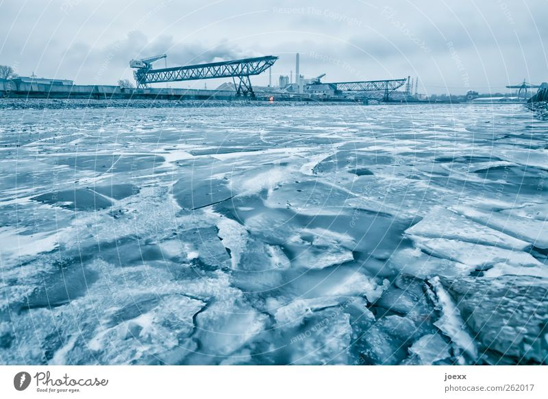 compulsory break Water Winter Bad weather Ice Frost River bank Port City Deserted Inland navigation Harbour Dark Large Cold Blue White Ice floe Ice sheet Frozen