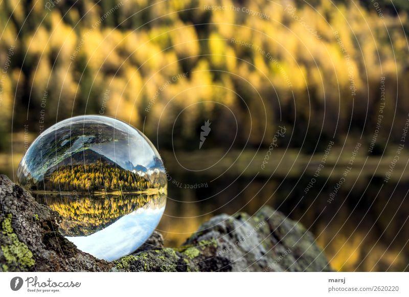 Forest Mountain Autumn Lake Illuminate Elegant Alps Harmonious Autumnal Autumnal colours Mountain lake Glass ball Larch