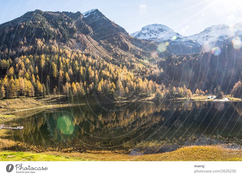 As of today, Autumn 2018 is history Harmonious Mountain Hiking Nature Landscape larch forest Alps Snowcapped peak Lake Duisitz Lake Mountain lake Illuminate