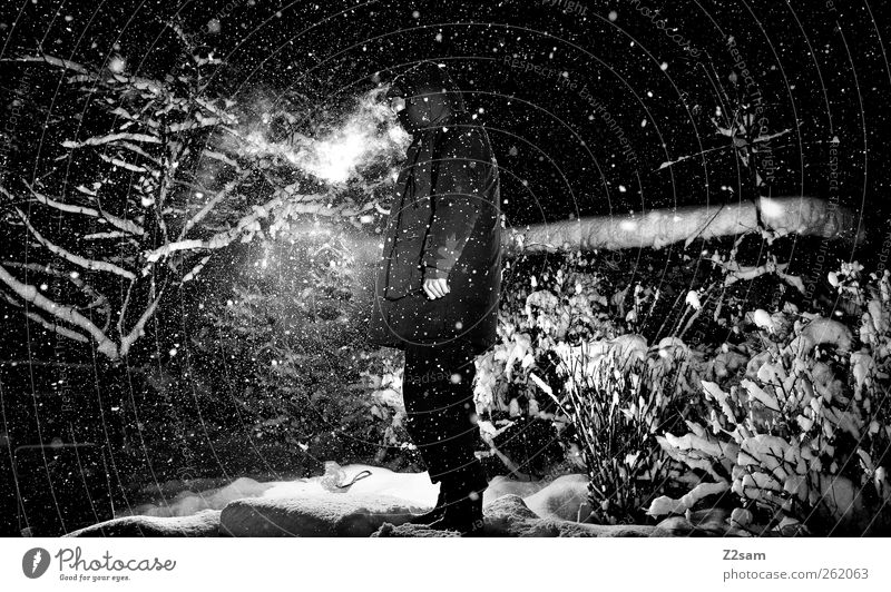 Nature Youth (Young adults) Winter Loneliness Adults Environment Dark Landscape Cold Snow Snowfall Power Masculine Stars Adventure Exceptional
