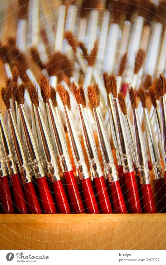 painting tools Painting (action, artwork) Painter Paintbrush Stand Esthetic Authentic Thin Glittering Many Brown Red Silver Orderliness Art Arrangement Keep