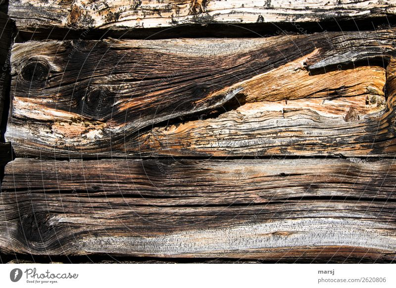 Wood with history Wooden wall Wooden board Wood grain Knothole Patina Old Bizarre Decline Weathered Transience Stability Sustainability Headstrong Uniqueness