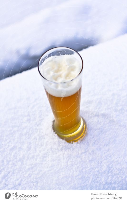 Cool Blondes Nutrition Beverage Cold drink Alcoholic drinks Beer Glass Winter Snow Yellow White Beer glass Wheat beer Refreshment Thirst-quencher Foam Chilled