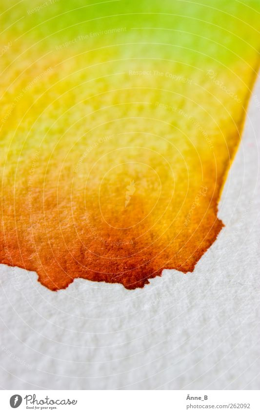 pass Leisure and hobbies Painting (action, artwork) Autumn Paper Play of colours Watercolors Illuminate Beautiful Yellow Green Red White Chaos Color gradient