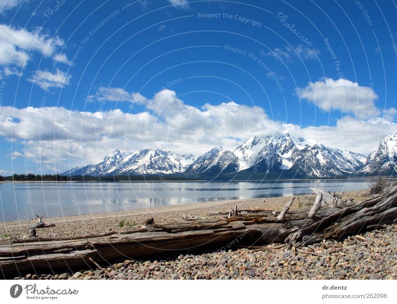Grand Teton National Park Panorama Vacation & Travel Tourism Trip Far-off places Freedom Sightseeing Island Winter Snow Mountain Hiking Environment Nature