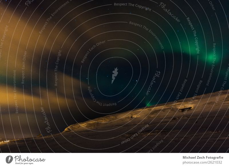 Incredible aurora borealis activity above ekkeroy island Winter Nature Aurora Borealis Natural Green The Arctic auroral Beauty Photography cold Frozen Galaxy