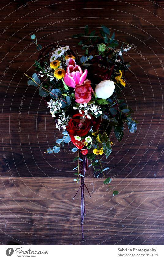 Valentine's Day 2.0 Elegant Decoration Flower Bushes Exotic Glittering To enjoy Feminine Multicoloured Green Red Happy Love Infatuation Loyalty Romance