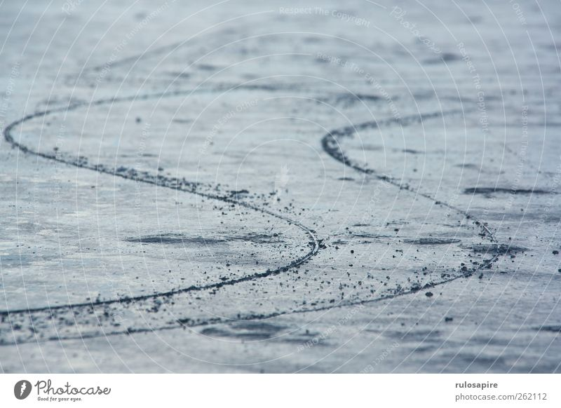 Blue Winter Cold Sports Gray Coast Ice Contentment Elegant Climate Success Frost Tracks Concentrate Baltic Sea Willpower