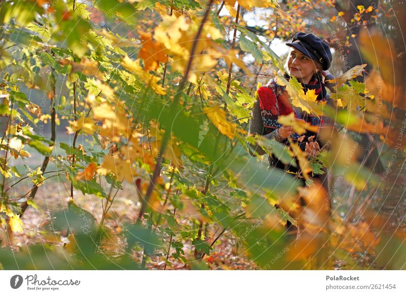 #A# Autumn forest 1 Human being Esthetic Autumn leaves Autumnal Autumnal colours Early fall Automn wood Autumnal weather Forest Autumnal landscape Autumn wind
