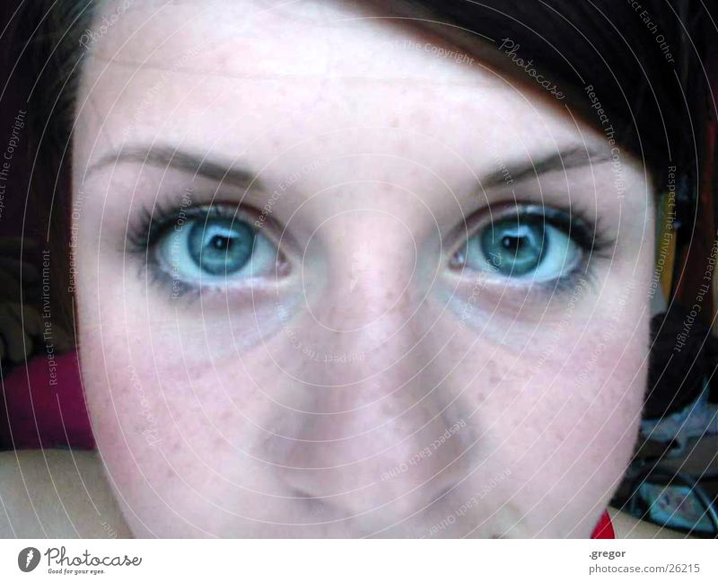 corinna =) Freckles Part Forehead Woman Blue Eyes Nose