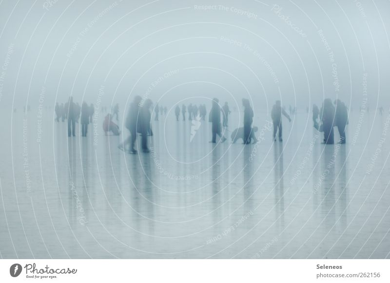 Human being Winter Cold Snow Group Ice Going Fog Stripe Frost To go for a walk Crowd of people Winter vacation