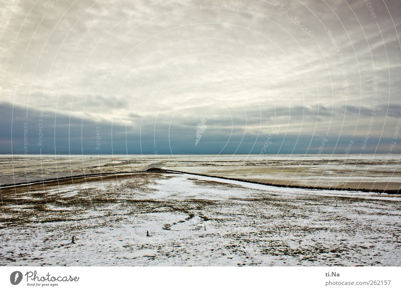 Sky Nature Water Winter Clouds Environment Landscape Cold Grass Coast Air Ice Tourism Frost Infinity North Sea