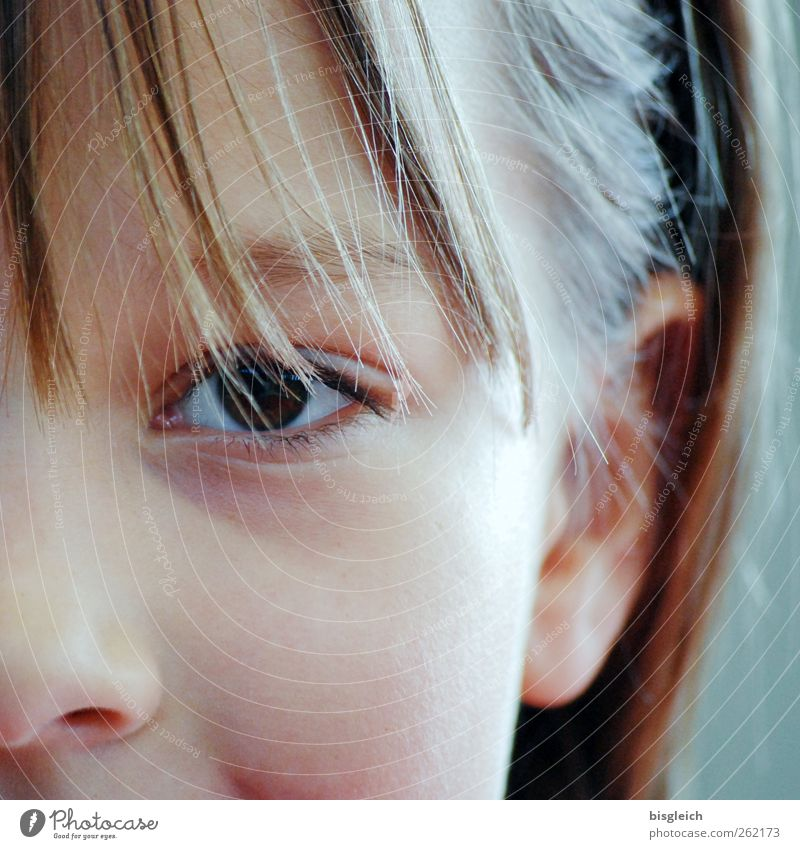 Human being Child Girl Face Eyes Feminine Head Hair and hairstyles Infancy Nose Ear Curiosity Trust 8 - 13 years