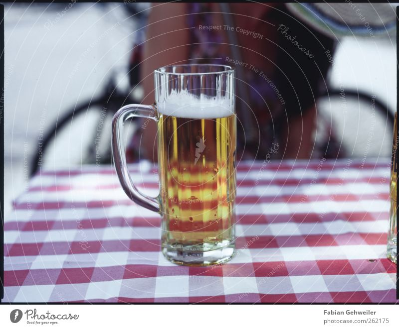 Nutrition Glass Beverage Drinking Beer Restaurant Intoxicant Alcoholic drinks Going out