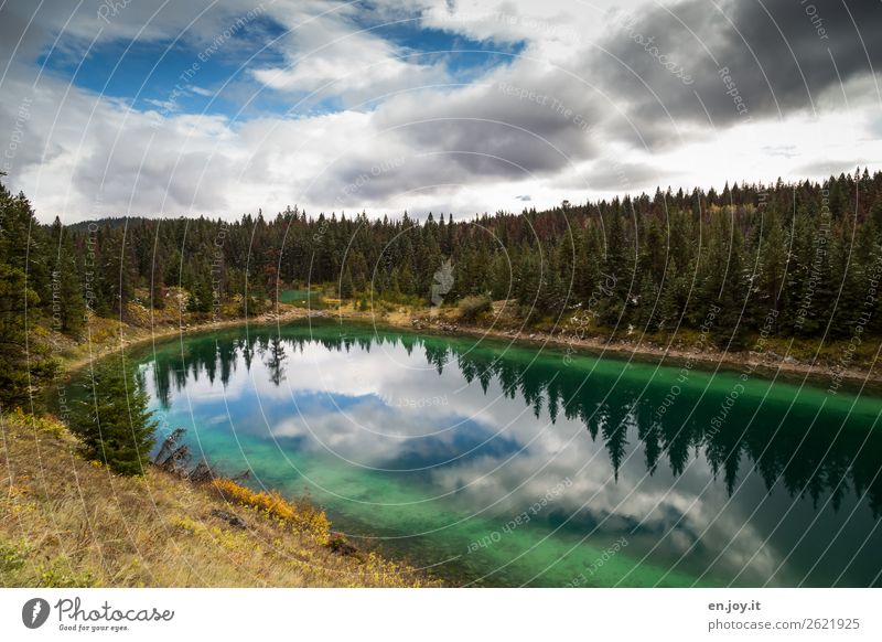 The 4th lake Vacation & Travel Trip Adventure Far-off places Freedom Nature Landscape Clouds Autumn Forest Lake Valley of Five Lakes Green Turquoise Relaxation