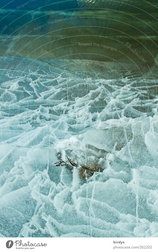 Nature Water Beautiful Winter Cold Lake Line Ice Natural Climate Esthetic Exceptional Frost Creativity Lakeside Bizarre