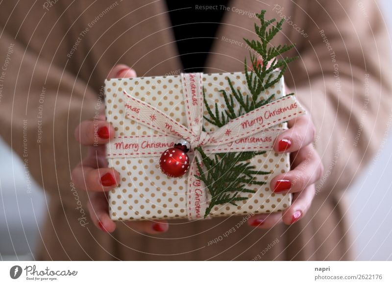 Women's hands holding Christmas parcels II Feasts & Celebrations Christmas & Advent Package Glitter Ball Anticipation Idea Trade Donate To hold on Hand Woman