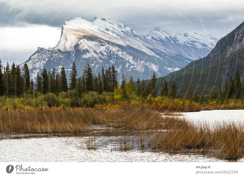 local mountain Vacation & Travel Trip Nature Landscape Sky Clouds Autumn Bushes Mountain Mount Rundle Snowcapped peak Lakeside Vermilion Lakes Idyll Canada