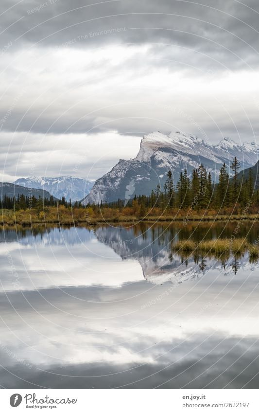 quiet in the evening Vacation & Travel Trip Mountain Nature Landscape Sky Clouds Autumn Bushes Coniferous trees Rocky Mountains Mount Rundle Snowcapped peak