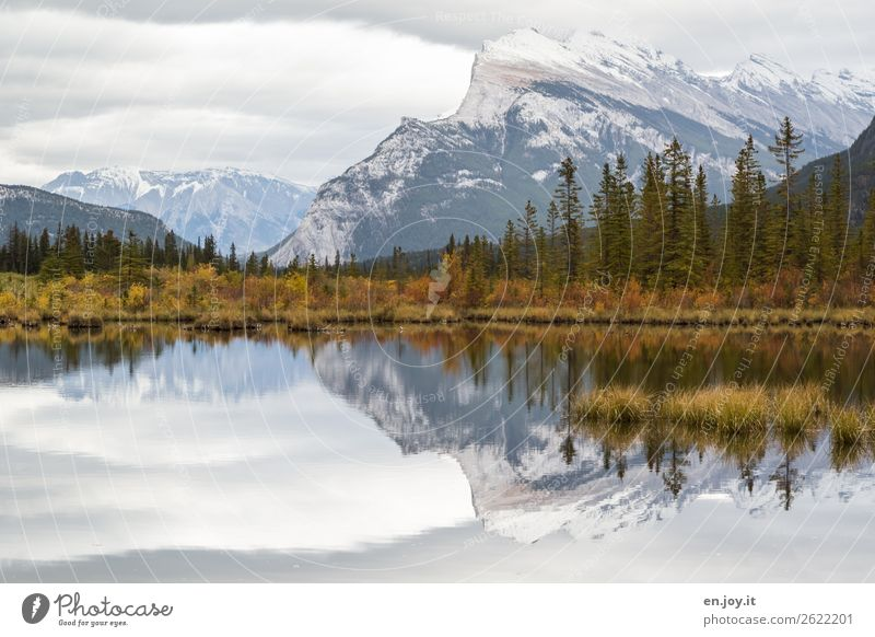 rest Vacation & Travel Trip Nature Landscape Sky Autumn Bushes Forest Mountain Snowcapped peak Lakeside Vermilion Lakes Loneliness Relaxation Idyll Climate Calm