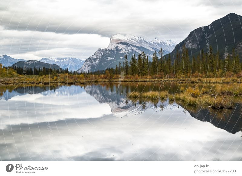 Symmetry | Mountains reflected in the lake in autumn and with overcast skies with many clouds Canada banff Banff National Park Vermilion Lakes Mount Rundle