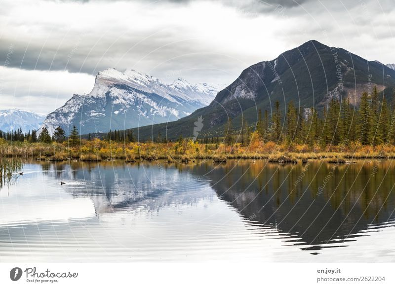 Reflection of an autumn landscape in a lake Vermilion Lakes banff National Park Banff National Park Alberta Canada North America reflection Autumn mountains