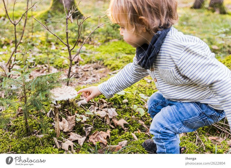 A baby playing on a forest path in autumn Lifestyle Joy Happy Vacation & Travel Tourism Adventure Freedom Hiking Hallowe'en Child Human being Baby Boy (child)